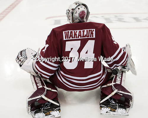 Alex Wakaluk (UMass - 34) - The Boston University Terriers defeated the University of Massachusetts Minutemen 3-1 on Friday, February 3, 2017, at Agganis Arena in Boston, Massachusetts.The Boston University Terriers defeated the visiting University of Massachusetts Amherst Minutemen 3-1 on Friday, February 3, 2017, at Agganis Arena in Boston, MA.
