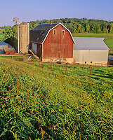 A Barn, Silo, and farm sit pretty in a valley in Sooutheast Minnesota's Root River Valley area, Fillmore County, Minnesota