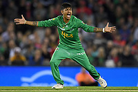 10th January 2020; Marvel Stadium, Melbourne, Victoria, Australia; Big Bash League Cricket, Melbourne Renegades versus Melbourne Stars; Sandeep Lamichhane of the Stars appeals for a wicket - Editorial Use