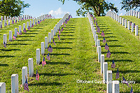 65095-02807 Gravestones at Jefferson Barracks National Cemetery St. Louis, MO