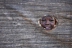 A girl looks through a hole in the canvas fence around her family's shelter in the Yida refugee camp in South Sudan. Some 53,000 refugees from Sudan's Nuba Mountains live in the camp, with an equal number living in two nearby camps.