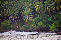 Mirissa Beach, photo of a woman surfing in front of palm trees, South Coast of Sri Lanka, Asia. This is a photo of a woman surfing in front of palm trees on Mirissa Beach, Sri Lanka, Asia. Mirissa Beach is a popular surfing spot on the South Coast of Sri Lanka.