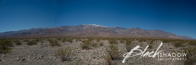 Death Valley National Park, USA, March 2012