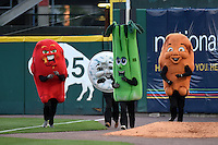 Buffalo Bisons on field promotion, the chicken wing race, in between innings during a game against the Durham Bulls on July 10, 2014 at Coca-Cola Field in Buffalo, New  York.  Durham defeated Buffalo 3-2.  (Mike Janes/Four Seam Images)