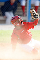 July 19, 2009:  Catcher Luis De La Cruz of the Batavia Muckdogs during a game at Dwyer Stadium in Batavia, NY.  The Muckdogs are the NY-Penn League Short-Season Class-A affiliate of the St. Louis Cardinals.  Photo By Mike Janes/Four Seam Images