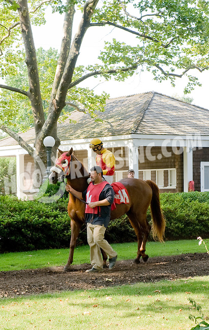 Sand Blastt before The Alec Courtelis Juvenile Arabian Stakes at Delaware Park on 7/9/12