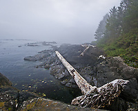 Point No Point is a resort on Vancouver Island.