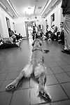 BEACON, NEW YORK-AUGUST:  Prisoners at Fishkill Correctional Facility train the puppies to obey commands. The program works with prison inmates in New York, New Jersey, and Connecticut to train service dogs, including ones who help injured soldiers. Fishkill Correctional Facility is a medium security prison in New York with 22 men in the puppy program.