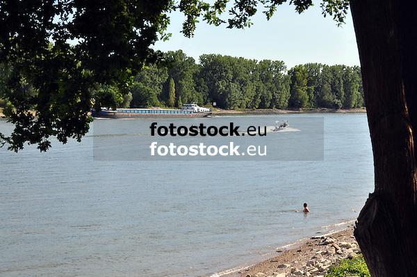 Frachtschiff, Motorboot mit Wasserski und Badender im Rhein bei Rheindurkheim