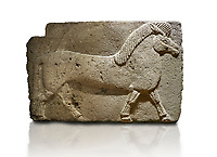 Phrygian relief sculpted orthostat stone panel. Andesite, Kucukevler, Ankara., 1200-700 B.C. Walking horse. Muscles in the legs of the figure are schematic. Anatolian Civilisations Museum, Ankara, Turkey<br /> <br /> Against a white background.