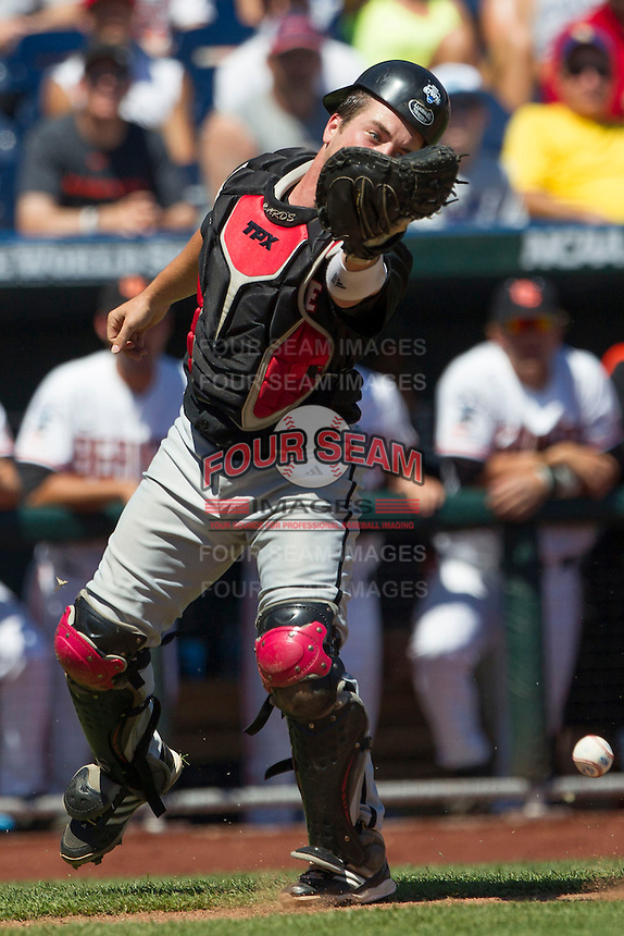 Louisville catcher Kyle Gibson (14) misses a pop foul against the Oregon State Beavers during Game 5 of the 2013 Men's College World Series on June 17, 2013 at TD Ameritrade Park in Omaha, Nebraska. The Beavers defeated Cardinals 11-4, eliminating Louisville from the tournament. (Andrew Woolley/Four Seam Images)