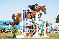 07-2016 NZL-Horse of the Year Show