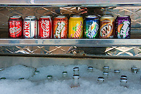 Assorted, Canned, Sodas, on Ice, Gourmet Food Truck