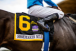 MAY 27: Florent Geroux wins the Shoemaker Mile at Santa Anita Park aboard Bolo in Arcadia, California on May 27, 2019. Evers/Eclipse Sportswire/CSM