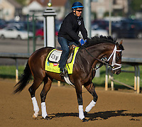 Overanalyze, trained by Todd Pletcher, during morning workouts for the Kentucky Derby at Churchill Downs in Louisville, Kentucky on April 30, 2013.
