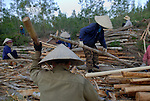 Vietnamese timber workers pound the bark off of freshly cut trees outside of Hoi An, Vietnam...Kevin German / LUCEO