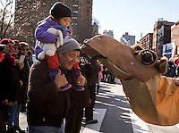 NEW YORK - JANUARY 06: A kid observes a camel during Three Kings Day Parade in East Harlem January 6, 2017 in New York City. The parade celebrates the Feast of the Epiphany, also known as Three Kings Day, marking the Biblical story of the visit of three kings to Bethlehem to visit the baby Jesus, revealing his divinity. Photo by VIEWpress/Maite H. Mateo