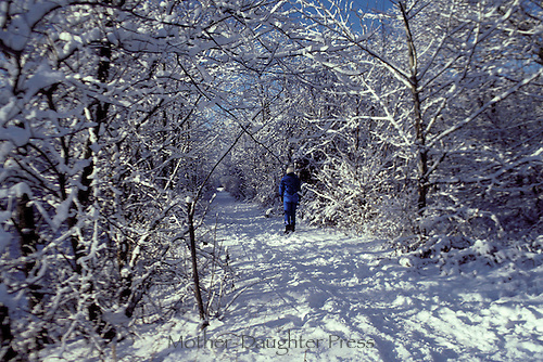 Fresh snow covers the country lane- woman walking with arches of snow covered trees, Midwest USA