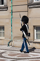 Guard in Copenhagen, Denmark at Amalienborg Palace.