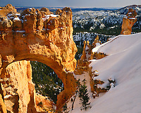 Morning light on Natural Bridge; Bryce Canyon National Park, UT