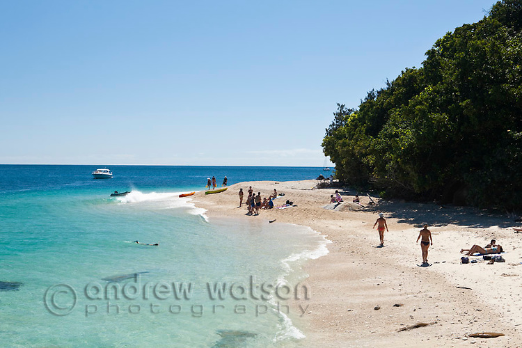 Swimmers and sunbathers on Nudey Beach.  Fitzroy Island National Park, Cairns, Queensland, Austtralia