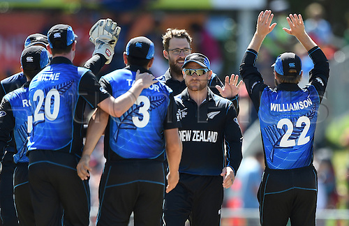 08.03.2015. Napier, New Zealand.  Daniel Vettori celebrates a wicket with team mates during the ICC Cricket World Cup match between New Zealand and Afghanistan at McLean Park in Napier, New Zealand. Sunday 8 March 2015.