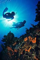 Snorkeler silhouette<br /> Life's Reef<br /> St. John<br /> U.S. Virgin Islands