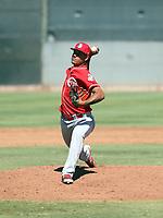 Carlos Carreno - 2017 AIL Reds (Bill Mitchell)