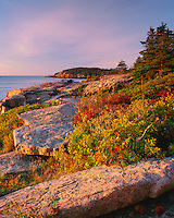 Acadia National Park, ME<br /> Morning light on the granite boulders and berry bushes on the Otter Cliffs near Newport Bay