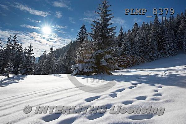 Marek, CHRISTMAS LANDSCAPES, WEIHNACHTEN WINTERLANDSCHAFTEN, NAVIDAD PAISAJES DE INVIERNO, photos+++++,PLMP8379,#xl#