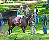 Alli Leigh before The Go for Wand Stakes at Delaware Park on 6/15/13