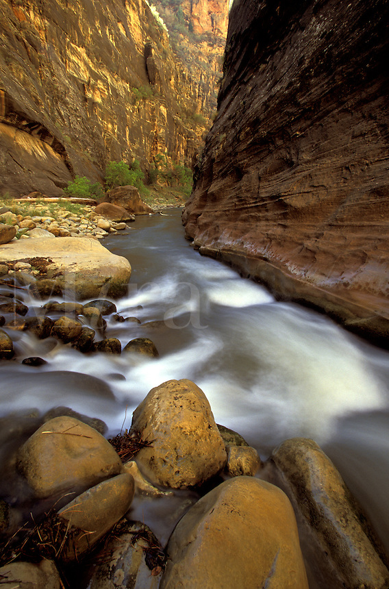 Zion Canyon Narrows, Zion National Park, Utah.