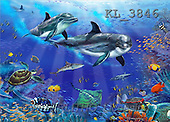 Interlitho, Lorenzo, REALISTIC ANIMALS, paintings, dolphins, turtle, fish(KL3846,#A#) realistische Tiere, realista, illustrations, pinturas ,puzzles