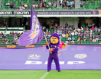 7th February 2020; HBF Park, Perth, Western Australia, Australia; A League Football, Perth Glory versus Wellington Phoenix; Perth Glory's mascot waives the flag before the start of the match