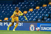 Goalkeeper Nicolas Tie of Chelsea U23 during the Premier League 2 match between Chelsea U23 and Brighton & Hove Albion Under 23 at Stamford Bridge, London, England on 13 September 2019. Photo by Andy Rowland.