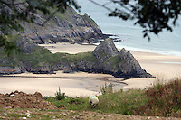 Pictured: Three Cliffs Bay in the Gower Peninsula near Swansea, south Wales. STOCK PICTURE<br />
