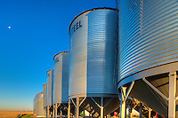 Grain bins. <br /> near Swift Current<br /> Saskatchewan<br /> Canada