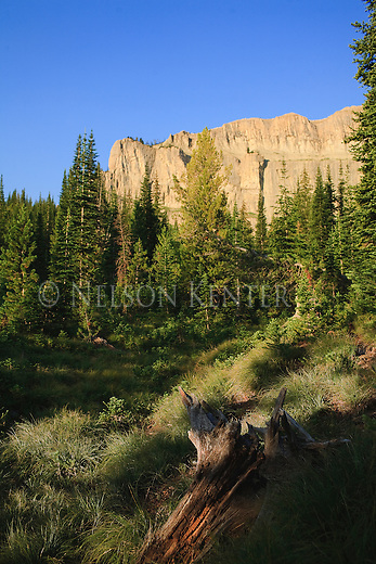 A meadow below the Chinese Wall in the Bob Marshall Wilderness area in western Montana