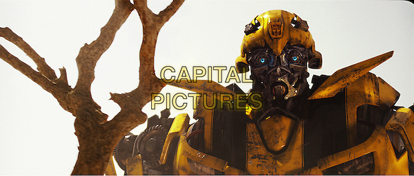 BUMBLEBEE.in Transformers: Revenge of the Fallen.*Filmstill - Editorial Use Only*.CAP/FB.Supplied by Capital Pictures.