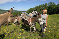 Donkeys used to be used for the transhumance. Pascaline, beekeeper and donkey herder in Bourdeaux, Drome, France, has used a few beehives to reconstruct a scene inspired by the history of Provence..