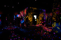 """The """"Flower Forest"""" in Team Lab's Borderless digital museum in Tokyo, Japan, July, 2019. The digital museum is one of Tokyo's most popular attractions and uses innovative digital audio-visual displays."""