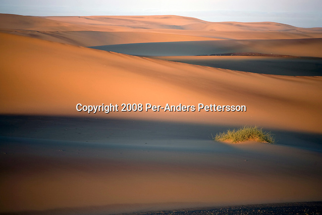 KUNENE, NAMIBIA - APRIL 29: A sand dune structure stands at Skeleton Coast on April 29, 2008 in Kunene, Namibia. The dunes are protected and might be open to the public in the future. They are at Skeleton Coast on the Atlantic Ocean northwest Namibia. (Photo by Per-Anders Pettersson).....