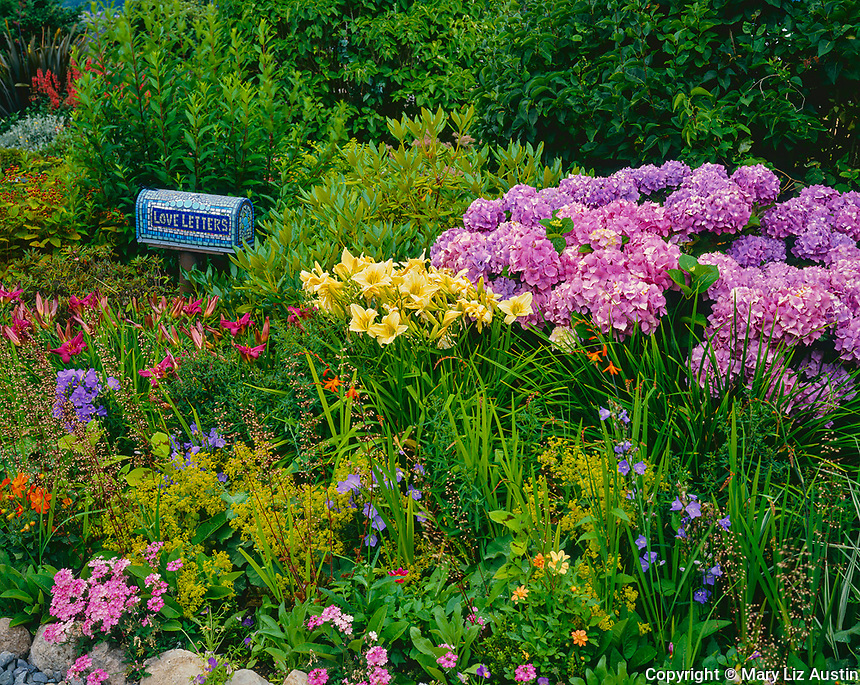 Vashon Island, WA<br /> Blue mosaic tiled mailbox promising love letters (artist - Elaine Summers) in a garden bed of summer perennials in a cottage garden