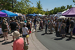 A photograph taken during the Lavender and Honey Festival in Sparks on Sunday, June 25, 2017.