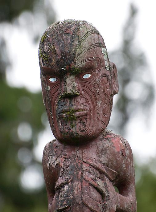 Carved Maori figure. West coast of the South Island.