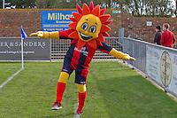 Sammy Sunshine