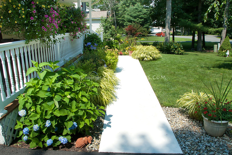Front Walkway to front porch of house, lawn grass, blue hydrangeas, ornamental grass hakonechloa, container pots, hanging baskets, entrance garden