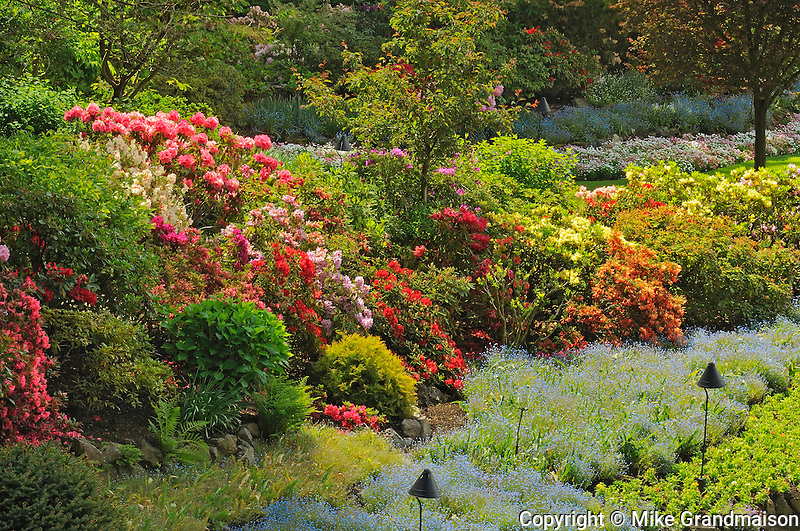 World Famous Butchart Gardens on Vancouver Island<br /> Victoria<br /> British Columbia<br /> Canada