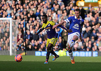 Pictured L-R: Nathan Dyer of Swansea and James McCarthy of Everton. Sunday 16 February 2014<br />