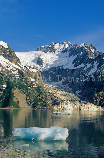 Iceberg and Ogive Glacier at Northwestern Lagoon in Kenai Fjords National Park, Alaska, AGPix_0210.